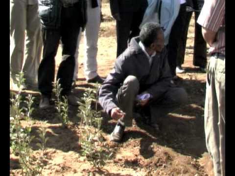UNDG visit to Eritrea